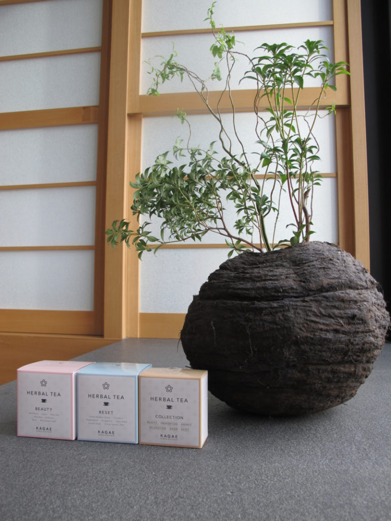 Kagae beauty tea in Japan