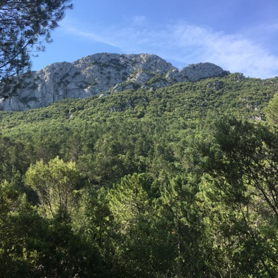 Nature in Provence