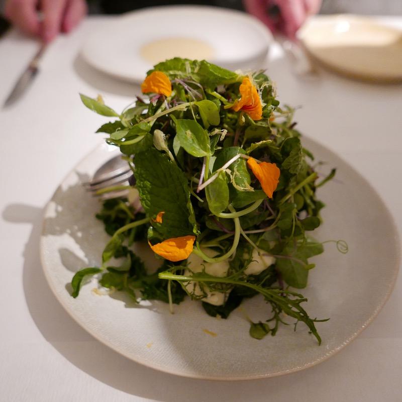 The new salad