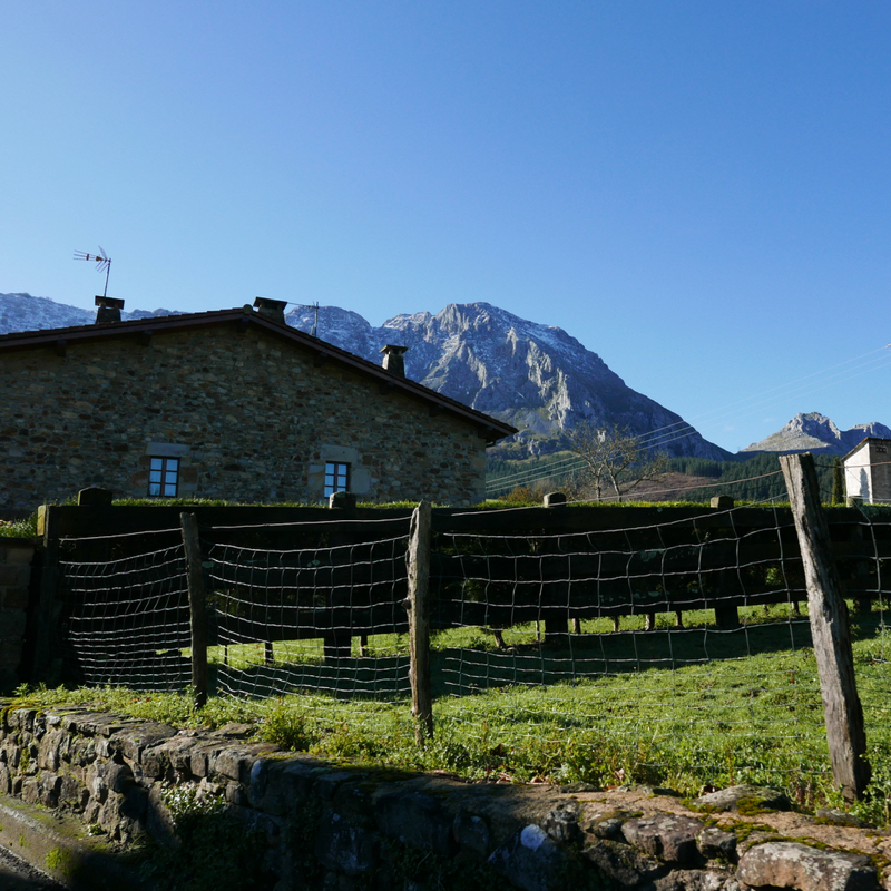 Basque countryside