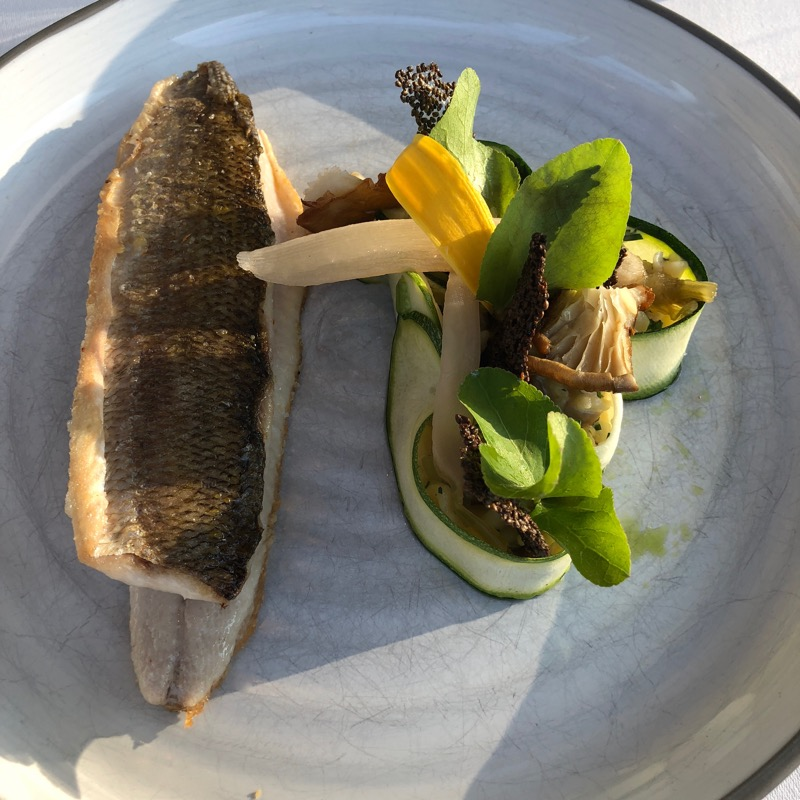 Austrian lake fish