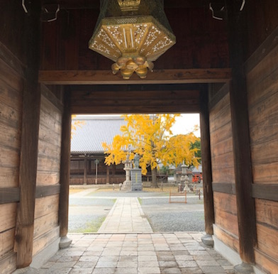 Photo essay: Autumnal beauty and poetry of Kyoto