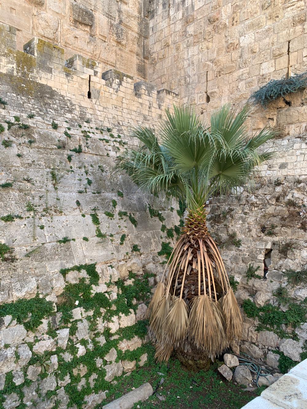 walls of Old Jerusalem