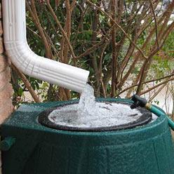 rainwater-harvesting_248