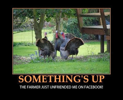 Thanksgiving_funny_02