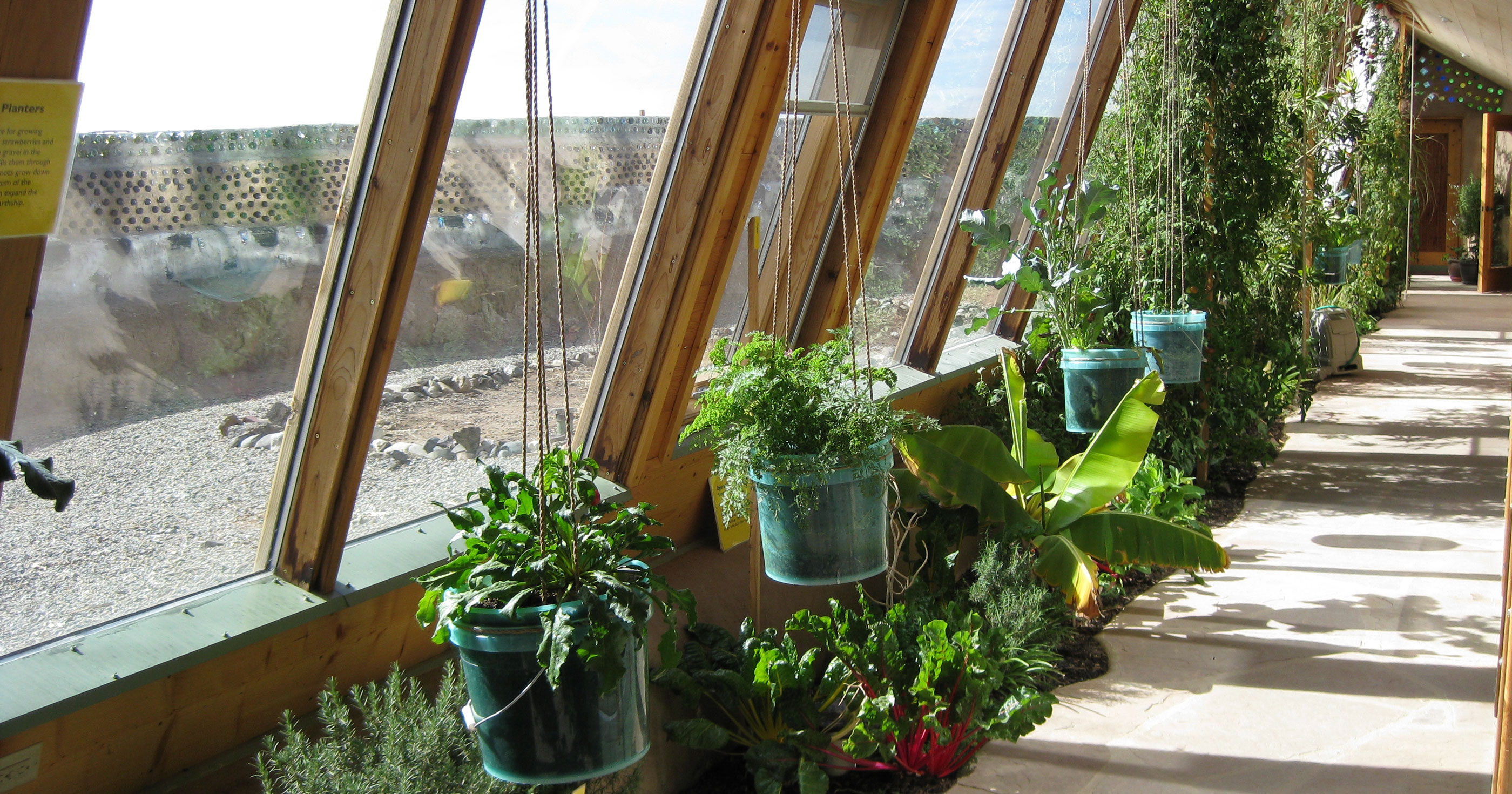 Earthship_inside_greenhouse