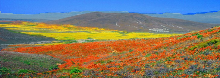 california-valley