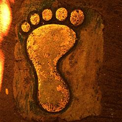 Blog-3_Bigfoot1