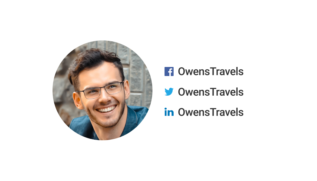 Wisecard Travel Agent back