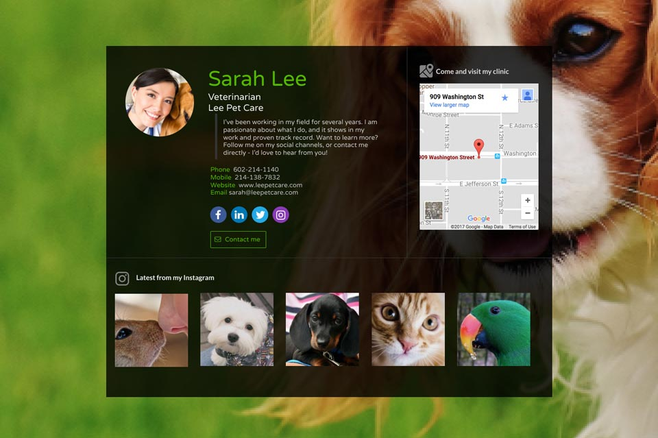 WiseIntro page for Veterinarian