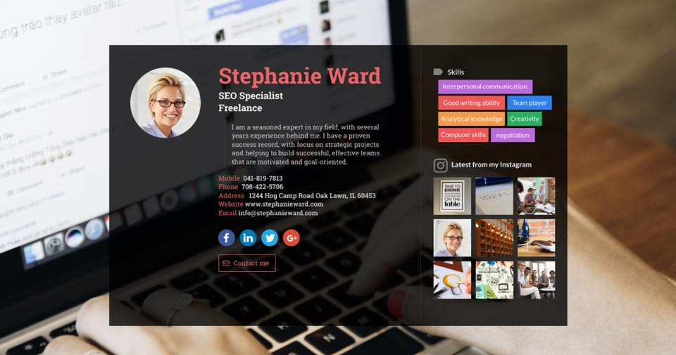 WiseIntro webpage for SEO Specialist