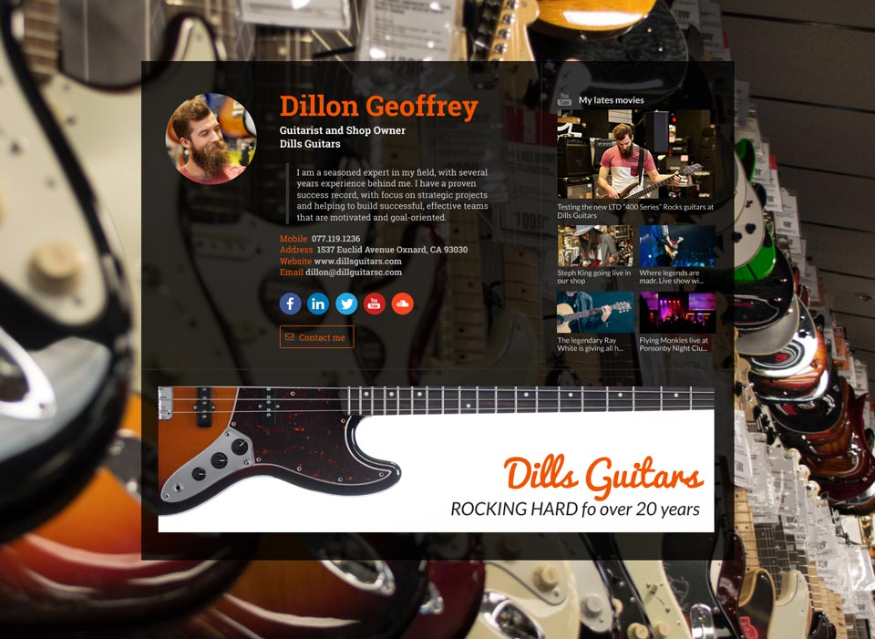 WiseIntro webpage for Guitarist & Shop Owner