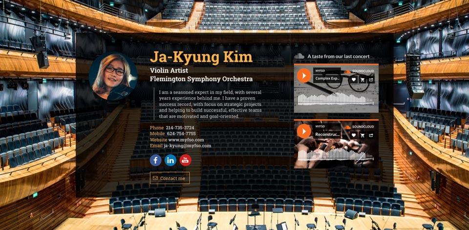 WiseIntro webpage for Violin Artist