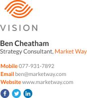 WiseStamp email signature for Strategy Consultant
