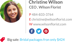 WiseStamp email signature for CEO