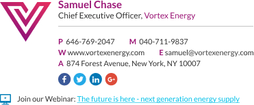 WiseStamp email signature for Chief Executive Officer
