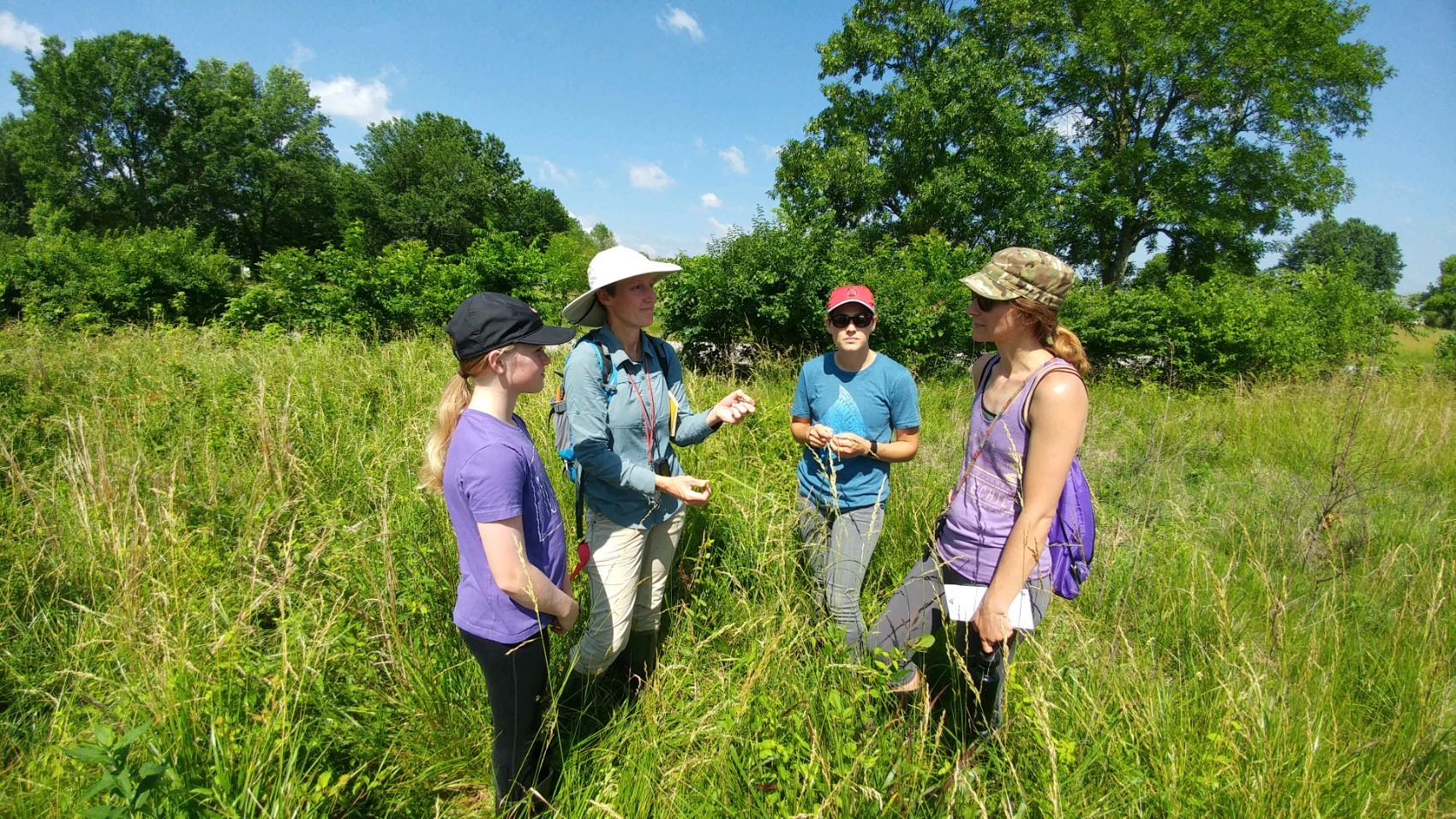 "Local experts and partners participate in a ""botany blitz"" hosted by the Northwest Arkansas Land Trust to identify unique prairie plants and to inform future management of the property from which solar siting was redirected. Photo courtesy of Northwest Arkansas Land Trust"