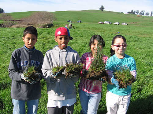 Students from Point Blue's Students and Teachers Restoring A Watershed (STRAW) program help restore creekside habitat on a private ranch. Point Blue is currently testing climate-smart planting palettes in hopes of providing wildlife habitat and food in the face of climate change. / Point Blue Conservation Science