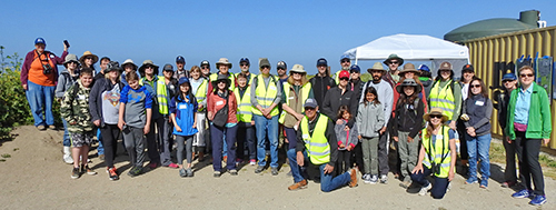Bioblitz participants at Wavecrest Open Space in Half Moon Bay, California, used the iNaturalist citizen science app to collect information on plants and animals.