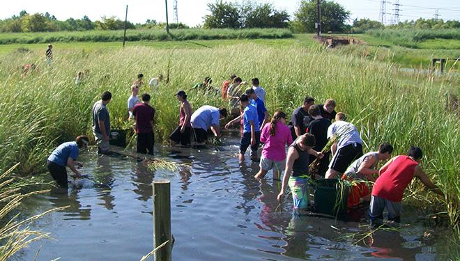 Students participating in Galveston Bay Foundation's school-year long wetland restoration project through its Hip to Habitat program/ GBF
