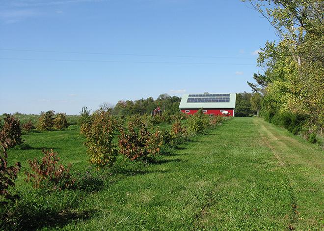 The Wischmeyer 40-acre agricultural conservation easement in Ohio features a certified organic farm with conservation practices of windbreaks and other tree plantings, and a solar array providing supplemental power to the homestead/Photo by Jim Spurgat