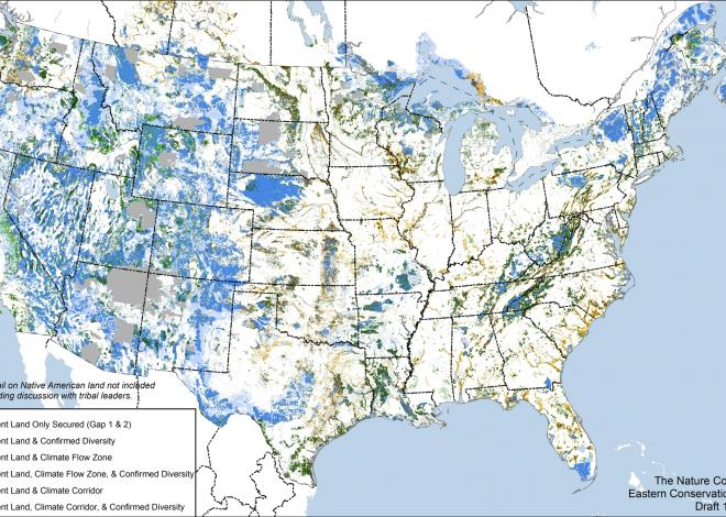 Maps created by The Nature Conservancy