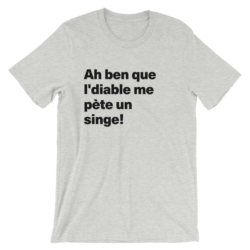 T-Shirt unisexe grisâtre «Ah ben que l'diable me pète un singe!»