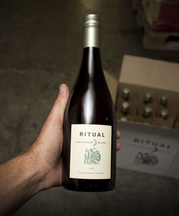 Ritual Sauvignon Blanc Casablanca Valley 2015  - Last Bottle