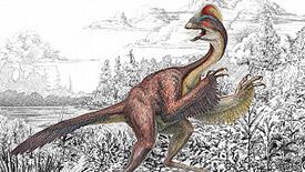 Los investigadores dicen que el Anzu wyliei parecía una cruce entre un avestruz y un lagarto.