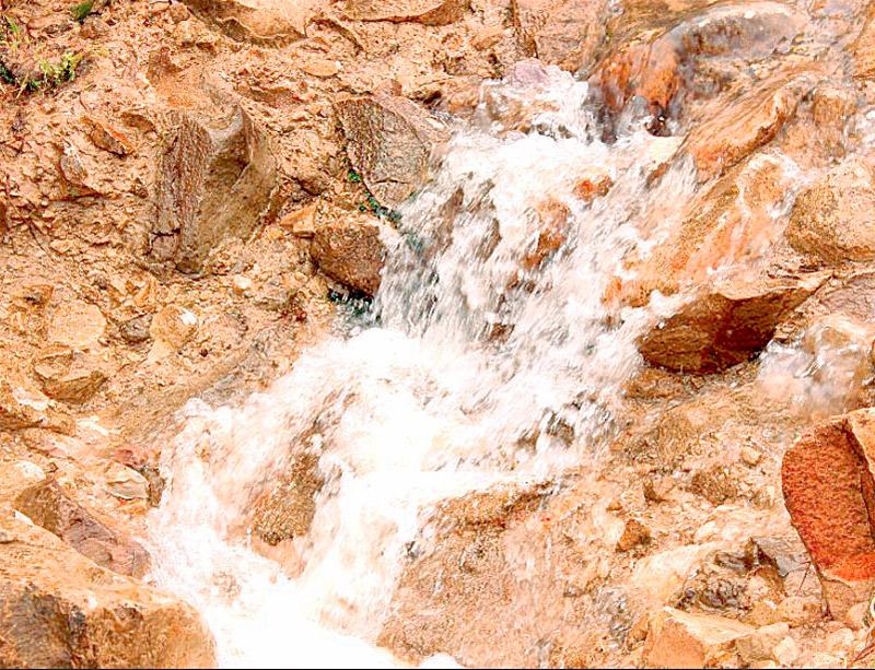 Este corredor boscoso, brinda abastecimiento de agua para 14 municipios que lo integran.