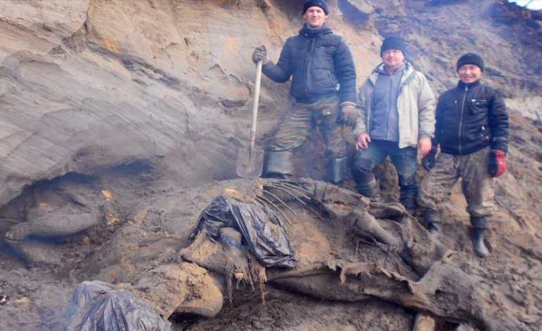 El hombre llegó al Ártico hace 45.000 años, según científicos rusos