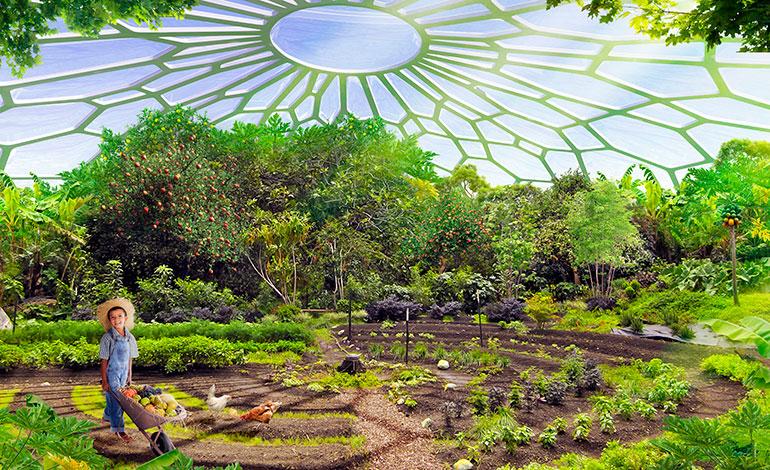 Infografía de cómo se desarrollará el cultivo dentro de las zonas comunes de la ciudad oasis diseñada para un moderno barrio próximo a Nueva Delhi.Foto: Vincent Callebaut Architectures (París)