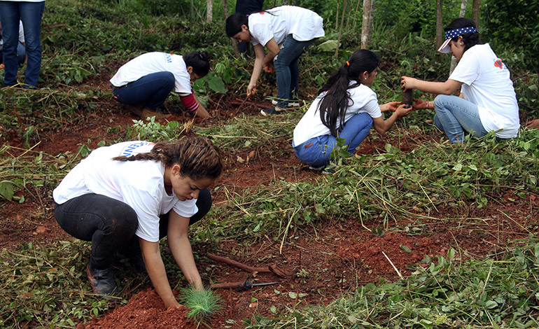 Siembran 1,200 árboles de pino en el cerro El Tigre de Cofradía