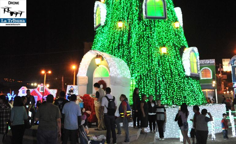 Un enorme árbol alumbrado completamente enamoró a los visitantes.