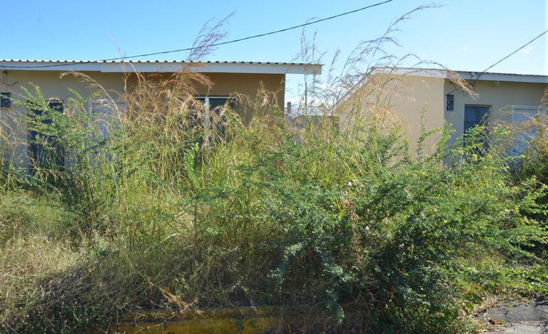 En abandono tiene Inprema  proyecto habitacional en Choluteca