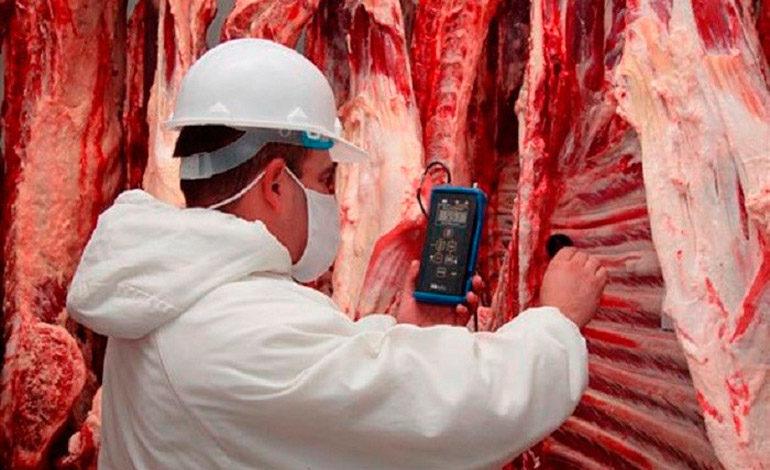 Casi lista reapertura de planta procesadora de carnes C&D