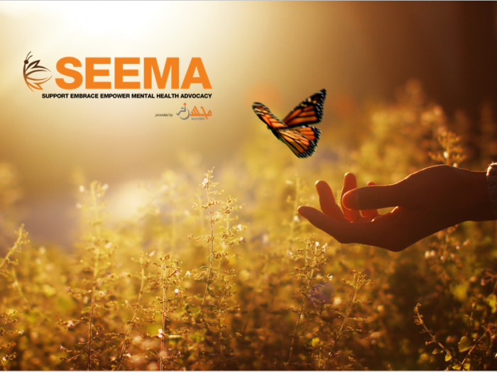 Projects | SEEMA: Support Embrace Empower Mental Health Advocacy