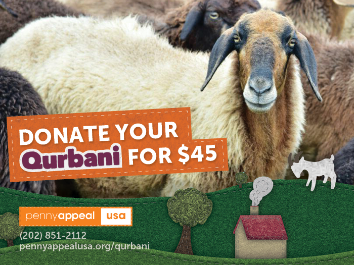 Projects | Give your $45 Qurbani/Udhiyah this Dhul Hijjah