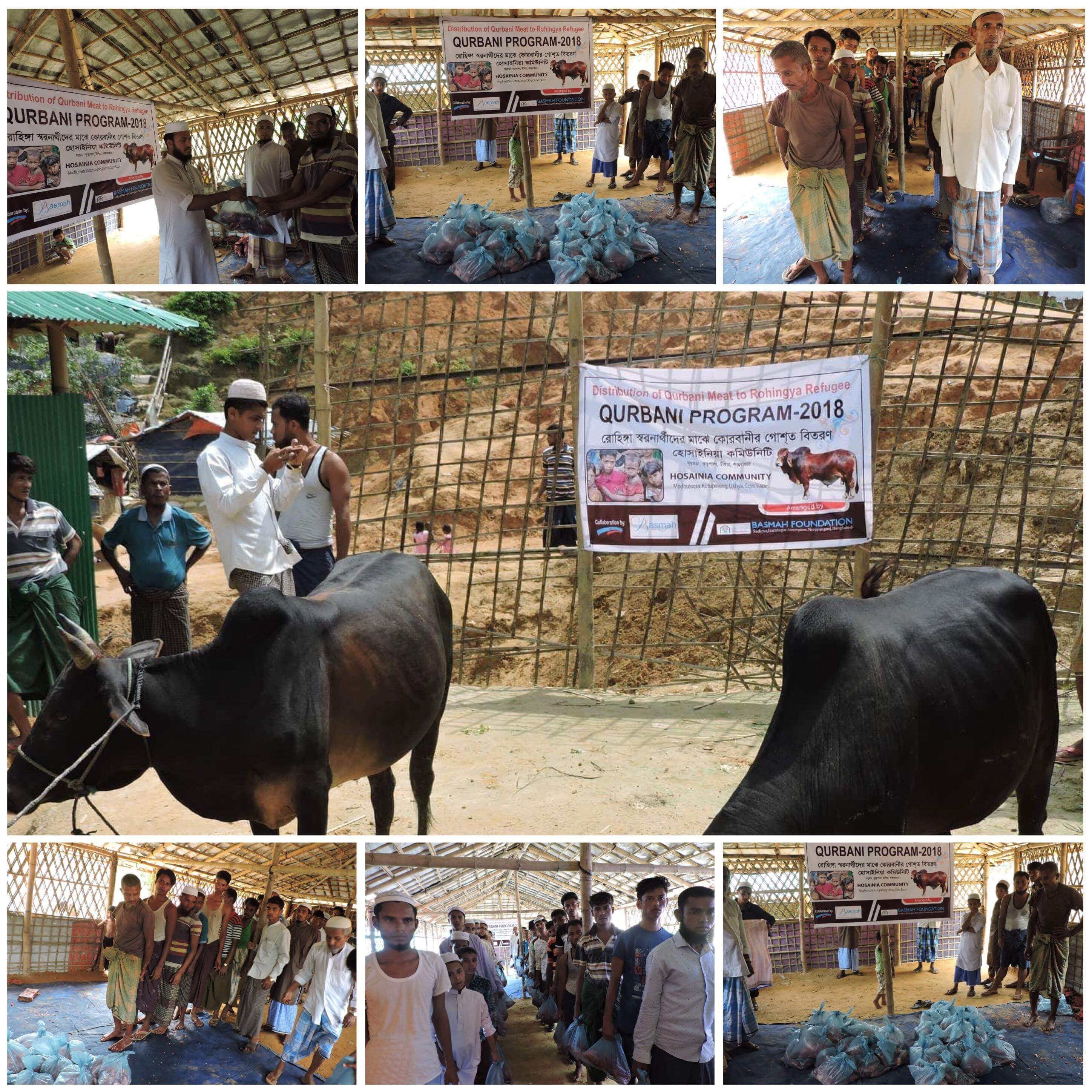 Projects | Qurbani/Udhiyah Appeal for Rohingya Refugees