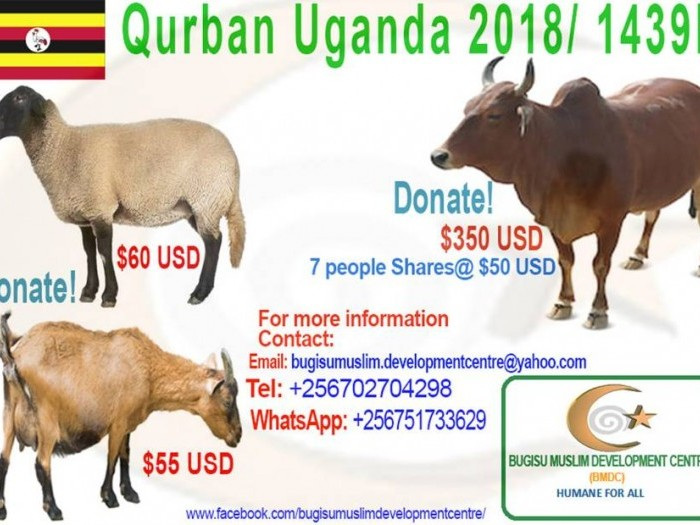 Projects   Qurban 2018/1439H   LaunchGood