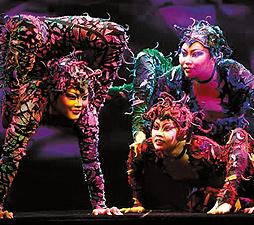 Photo Courtesy of Cirque Dreams: Jungle Fantasy