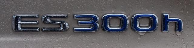 ES 300h Badge