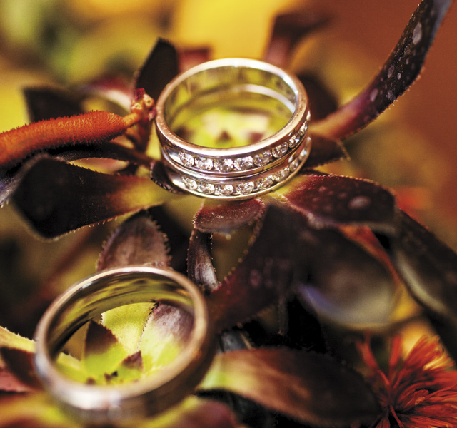 Happily-Ever-After-Andrew-Vetrone-and-Michael-Fischer-Rings
