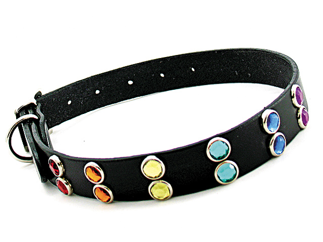 Leather-Pet-Collar-with-Rainbow-Jewels