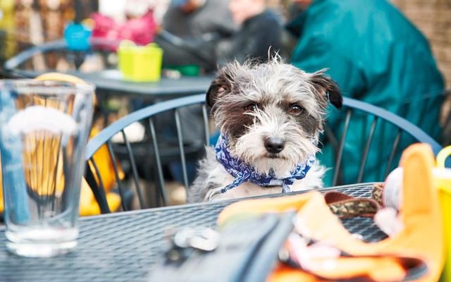 Photo by Sarah Beth Ernhart - www.sarahbethphotography.com