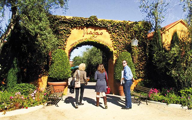 Viaggio produces fine wines from Italian varietals in Lodi. Photo by Carla Waldemar