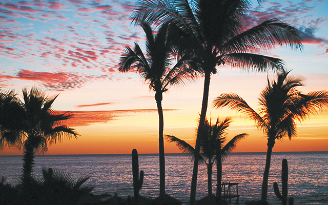 Los Cabos. All photos by Pat Evans