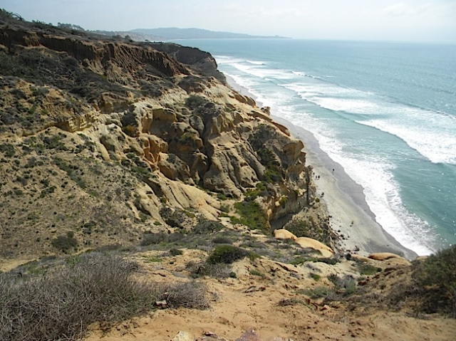 Trails at Torrey Pines State Reserve provide breathtaking views of the ocean. Photo by Krissy Bradbury.