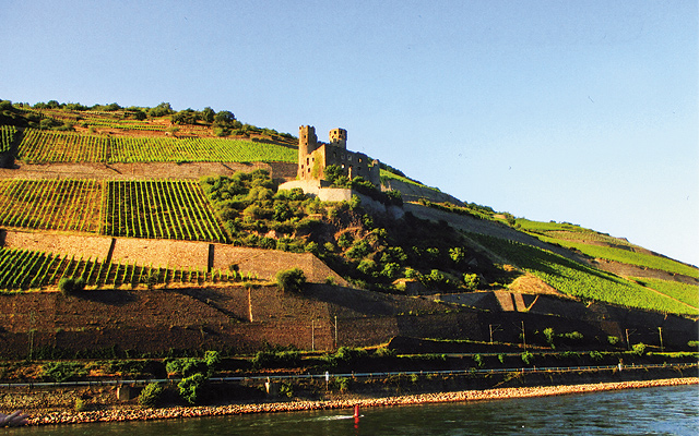 Castle along the Rhine. Photo by Carla Waldemar
