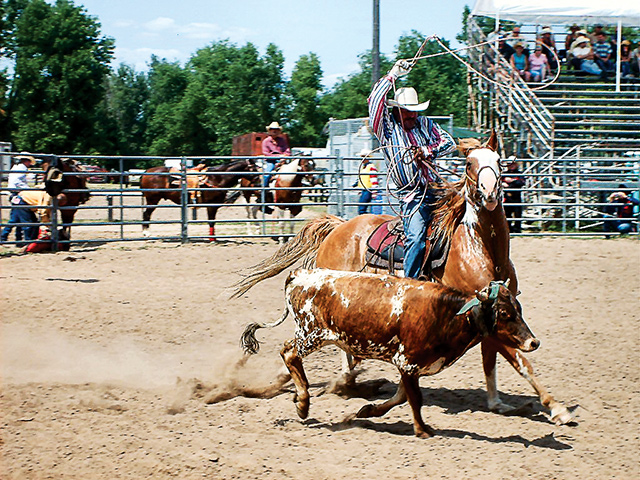 North Star Gay Rodeo Association. Photo by Dan Van Wyk
